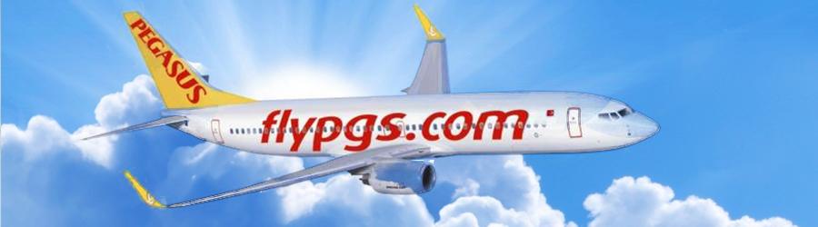 handbagage-afmetingen-pegasus-airlines
