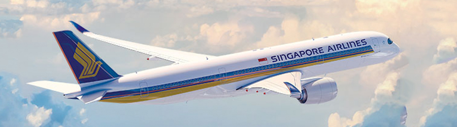 handbagage-afmetingen-singapore-airlines